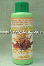 Унифлор - пестрый лист